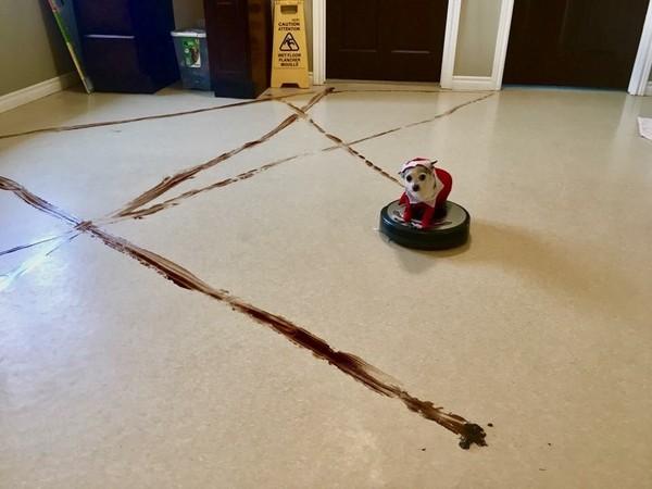 想買掃地機器人請先看!基礎知識一定要懂