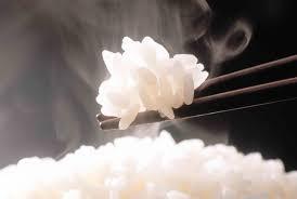 好米還得配好鍋,電鍋/電子鍋購買前必看